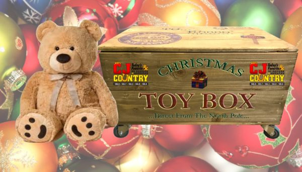 FILL THE TOY BOX TO MAKE A CHILD SMILE